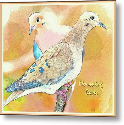 Mourning Dove Pair  Metal Print by A Gurmankin