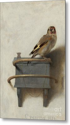 The Goldfinch Metal Print by Carel Fabritius
