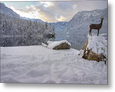 Metal Print featuring the photograph Alpine Winter Reflections by Ian Middleton