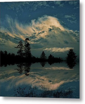 Metal Print featuring the photograph 4395 by Peter Holme III