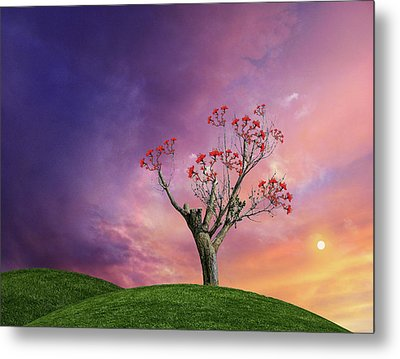 Metal Print featuring the photograph 4451 by Peter Holme III