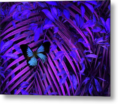 Metal Print featuring the photograph 4454 by Peter Holme III