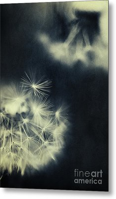 Whispers In The Dark 3 Metal Print by Priska Wettstein