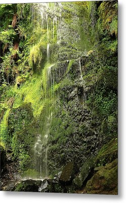 Waterfall Metal Print by Svetlana Sewell