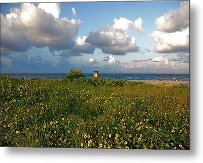 Metal Print featuring the photograph 8- Sunflowers In Paradise by Joseph Keane