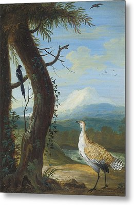 A Bustard And A Magpie In An Exotic Landscape Metal Print