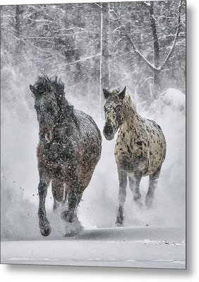 Metal Print featuring the photograph A Cold Winter's Run by Wade Aiken