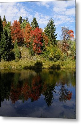 Metal Print featuring the photograph A Colorful Reflection by DeeLon Merritt