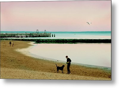 A Dog's Day Metal Print by Diana Angstadt