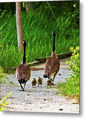 A Family Stroll Metal Print by Edward Peterson