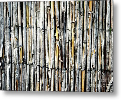 A Fence With Cane Grass Metal Print