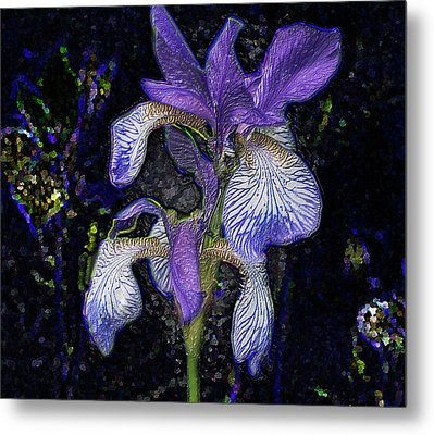 Metal Print featuring the photograph A Flower by Vladimir Kholostykh