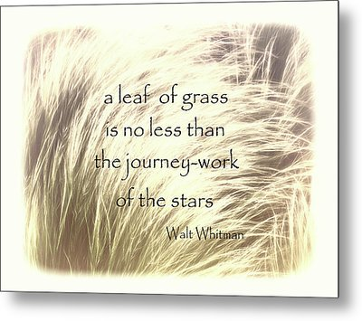 A Leaf Of Grass Walt Whitman Quote Metal Print