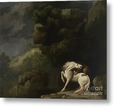 A Lion Attacking A Horse, 1770 Metal Print by George Stubbs