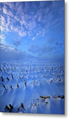 Metal Print featuring the photograph A Quiet Light Purely Seen by Phil Koch