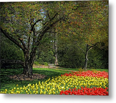 Metal Print featuring the photograph A Quiet Place by John Rivera