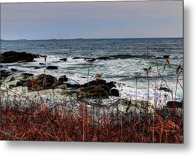 Metal Print featuring the photograph A Shoreline In New England by Tom Prendergast