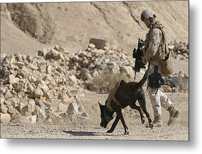 A Soldier And His Dog Search An Area Metal Print by Stocktrek Images