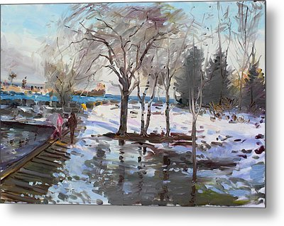 A Sunny Freezing Day Metal Print