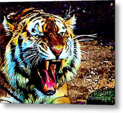 A Tiger's Roar Metal Print by Zedi