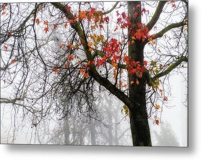 A Trace Of Autumn Metal Print