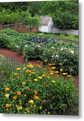 A Williamsburg Garden Metal Print