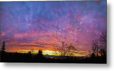 Metal Print featuring the photograph A Winter Sunrise by Angie Vogel