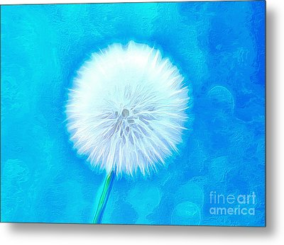 A Wish For You Metal Print by Krissy Katsimbras
