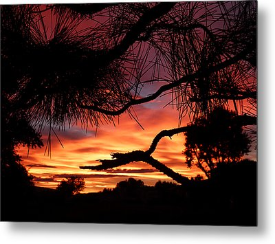 A Wishbone Sunset Metal Print