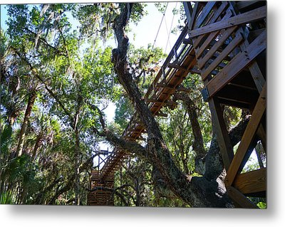 Above The Treeline Metal Print
