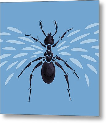 Abstract Winged Ant Metal Print by Boriana Giormova