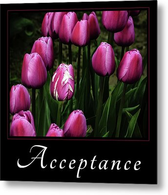 Metal Print featuring the photograph Acceptance by Mary Jo Allen