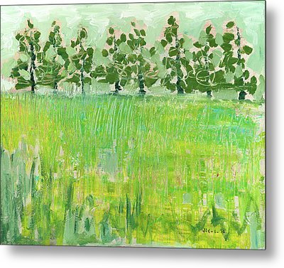 Across The Meadow Metal Print by Jennifer Lommers