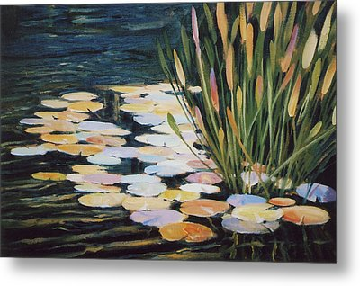 Across The Pond Metal Print by Ed Lucey