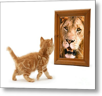 Admiring The Lion Within Metal Print