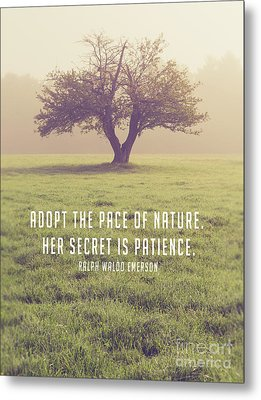 Adopt The Pace Of Nature. Her Secret Is Patience. Metal Print