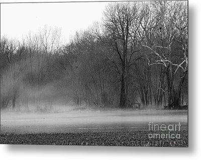 Afternoon Fog Rising Metal Print by Michelle Hastings