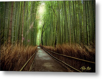 Afternoon In The Bamboo Metal Print by Rikk Flohr