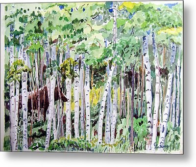 Alaska - Moose In Birches Metal Print