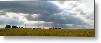 Alberta Wheat Field Metal Print by Stuart Turnbull