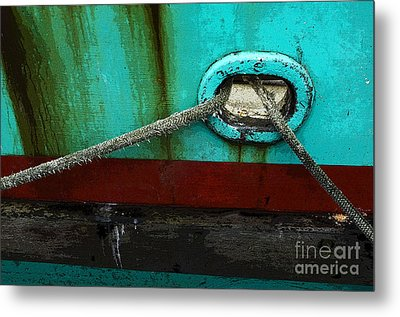 All Tied Up Metal Print by Bob Christopher