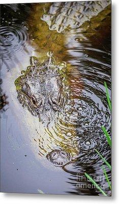 Alligator Blowing Bubbles Metal Print