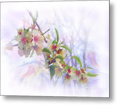 Almond Blossoms Metal Print