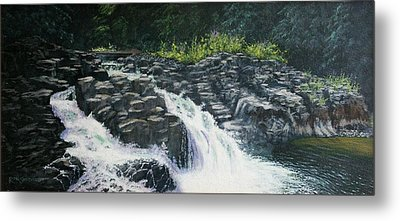 Almost Home - Lucia Falls Metal Print by Ron Smothers