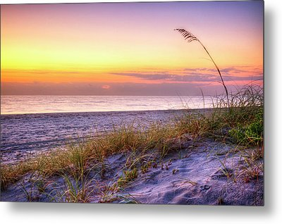 Metal Print featuring the photograph Alone At Dawn by Debra and Dave Vanderlaan