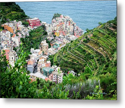 Along The Via Del Amore Metal Print by William Beuther