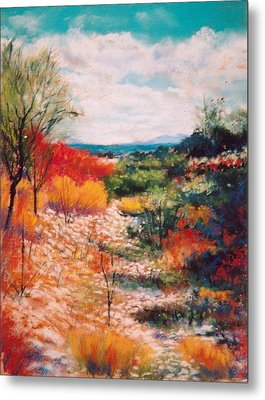 Metal Print featuring the painting Along The Wash by M Diane Bonaparte
