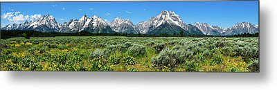 Alpine Meadow Teton Panorama II Metal Print by Greg Norrell