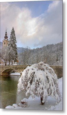 Alpine Winter Beauty Metal Print