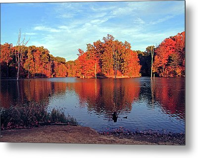 Alum Creek Landscape Metal Print by Angela Murdock
